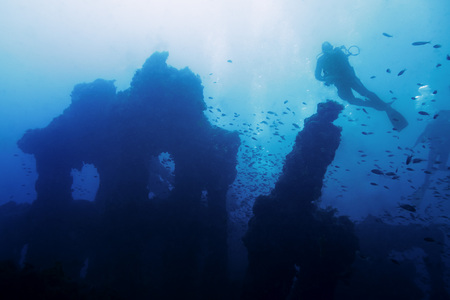 a person dives placidly on the old remains of a sunken ship. Hundreds of fish surround the mysterious wreck that rests at the bottom of a turbid blue sea