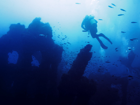 Some people dive peacefully on the old remains of a sunken ship. Hundreds of fish surround the mysterious wreck that rests at the bottom of a turbid blue sea