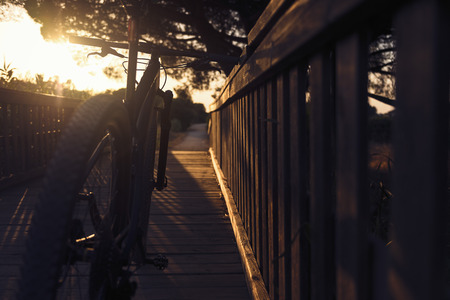 Mountain bike illuminated by the sunlight of sunset resting on a wooden bridge of a rural road, the rays of sun sneak between the branches of a large tree in silhouette. Dark mood, lens blur