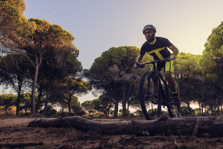 cyclist with a beard riding a mountain bike circulates concentrated in a forest glade, sunset light illuminates the tops of the pine trees