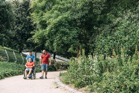 disabled man in a wheelchair walking with his nurse and a friend at park, concept of medical care and rehabilitation of people with disabilities and reduced mobility problems Фото со стока - 128724090