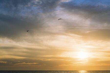goélands survolant la mer à travers le ciel nuageux spectaculaire au coucher du soleil, concept de liberté, espace de copie pour le texte