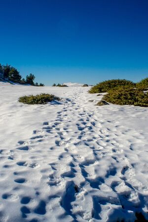 horizontal landscape of a path on the snow that leads us to the summit of the peñalara mountain in segovia a sunny day with a clear blue sky