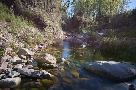 Quiet river on a bright spring morning. Colors of nature