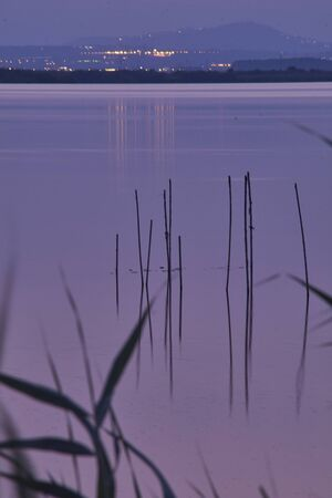 Sunset on the big lake, from the reeds, green, golden colors, calm waters, reflections, long exposition