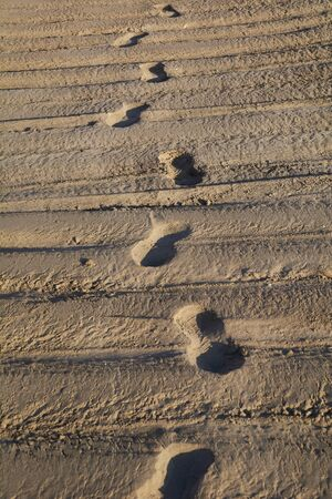 Human footprint on the beach, sunrise, road, lonely,