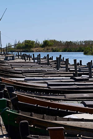 Set of small boats in a fishing port. lake, blue sky, reeds, wood