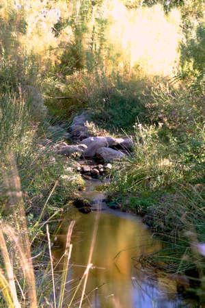Small mountain river in sunny day, long exposure, silk effect 版權商用圖片