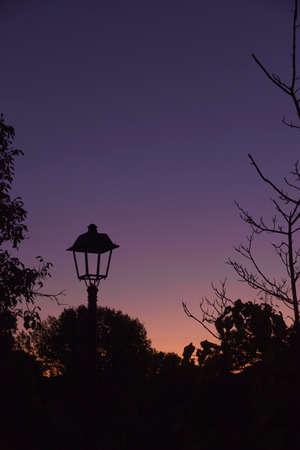Street light, off at sunset, nature, magenta colors 版權商用圖片