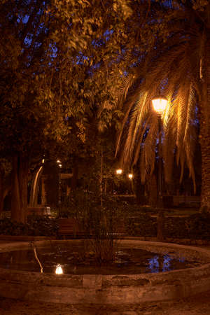 Romantic night park, with fountain and lamppost, reflections, lonely, warm