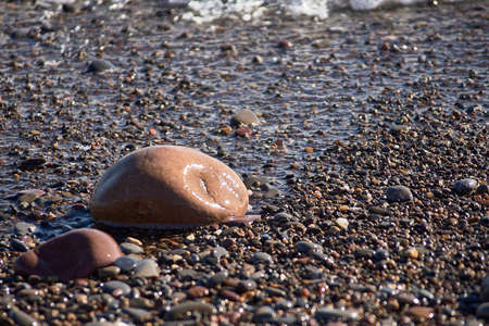 Set of rocks on the shore of the beach, unfocused background, nobody, close-up, sunny, large and small stones