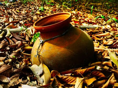 cracky: Old clay pot on ground with leaves