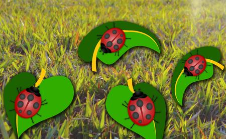 ladybug: Ladybug on Leaf Abstract Illustration