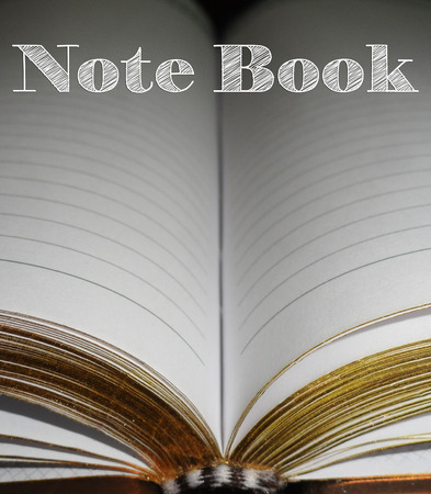 blank note book: Blank Note Book Pages