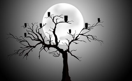 cloudless: Full Moon Light Night with Tree Silhouette and Owls