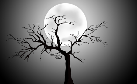 thickets: Full Moon Light Night with Tree Silhouette Stock Photo
