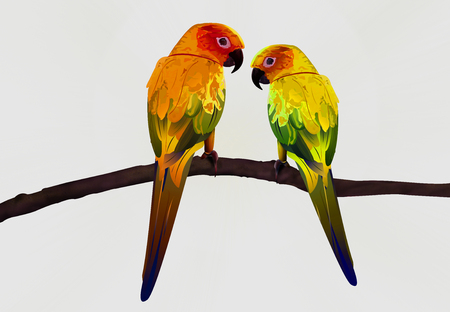 macaw: Colorful Parrot Illustration, Macaw Bird