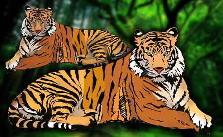 tigress: Royal Bengal Tiger family illustration Stock Photo
