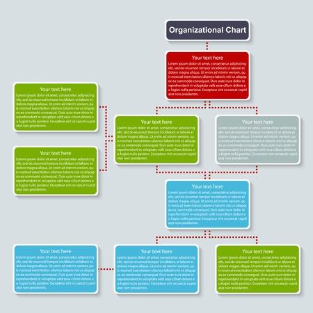 Organization chart template  Vector