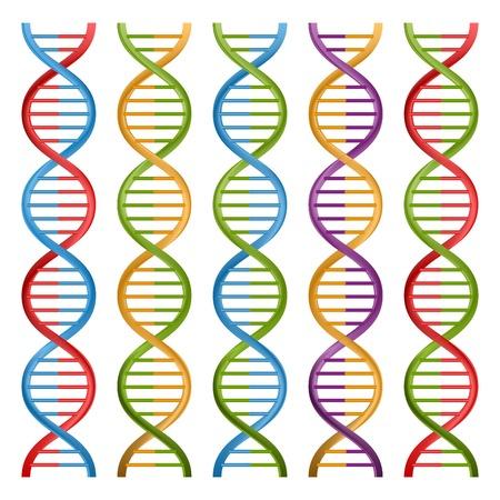 Set of DNA symbols for science and medicine. Vector design. Vector