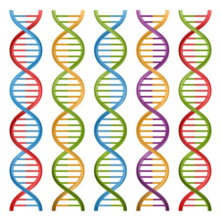dna chain: Set of DNA symbols for science and medicine. Vector design.