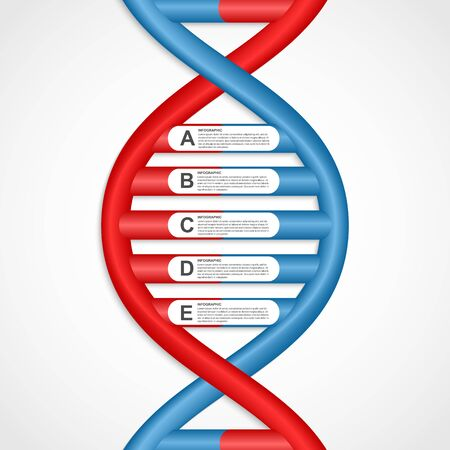 dna helix: Infographics in the DNA helix form. Vector design element.