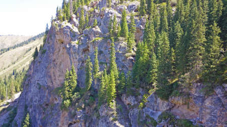 View of the forest and gorge from above. Huge rocks of the gorge covered with coniferous trees. You can see paths and people walking along them. The river runs. Mountainous area of Kazakhstan. 版權商用圖片