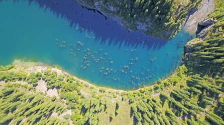 Coniferous trees rise from the depths of a mountain lake. Top view from the drone. On the shore you can see rocks, green forest and grass growing. Kaindy Lake, Kazakhstan. Groups tourists are resting.