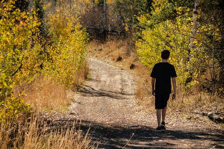 A boy sets out on an adventure along the countryside on a quiet Autumn afternoon.
