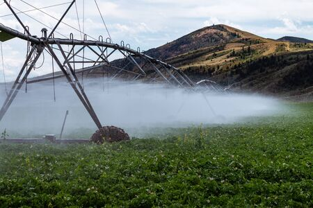 Wheel line sprinklers water potatoes in an Idaho field, surrounded by beautiful mountains. Foto de archivo