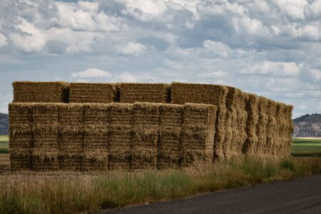 A large stack of hay bales sits in a farm field next to the side of the road, topped with a cloudy sky.
