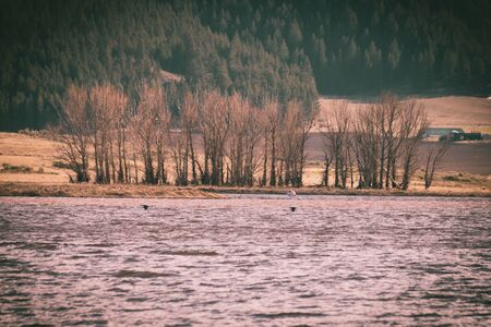 Blurry bird silhouettes flying over the turbulent waters of the Alexander Reservoir in Soda Springs, Idaho on a windy Spring evening. Stock Photo