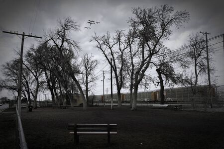 A dog park with dark evening skies and interesting leaning trees, sits next to railroad tracks in Pocatello, Idaho.