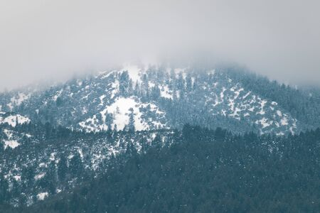 A mountain-top is covered with snow and fog on this chilly February morning in the higher elevations of rural Idaho.