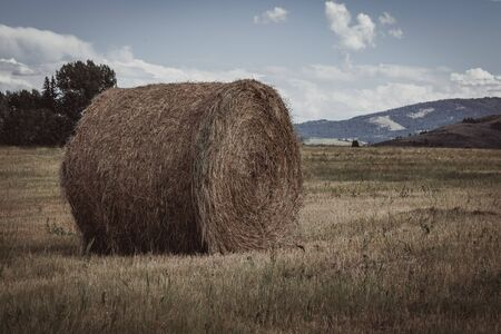 Closeup of a roll of hay used for bedding and farm animal food, sitting in a field surrounded by mountains.