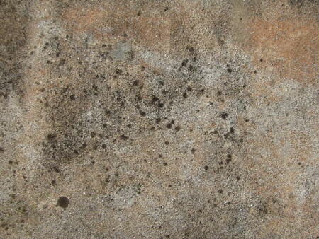 Background of old brown stone tile with some black moss photo