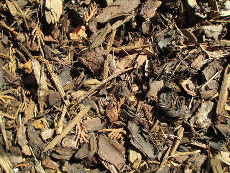 Detail of brown mulch wood chips texture