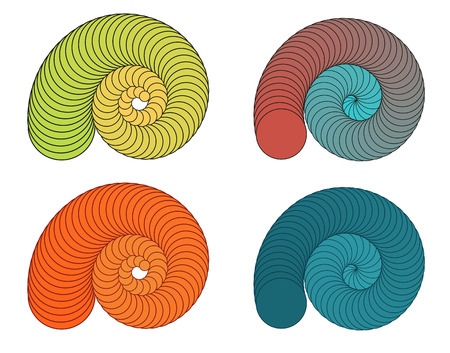 Set of 4 isolated colorful shells in different colors Illustration