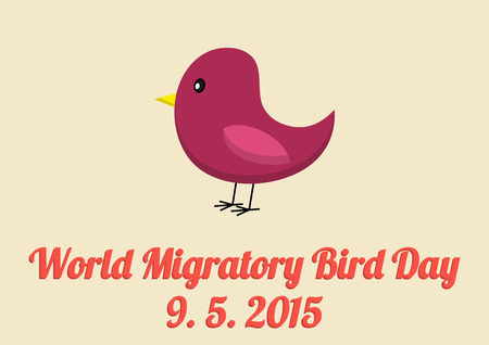 diversity of the region: World Migratory Bird Day poster in vintage colors and flat style
