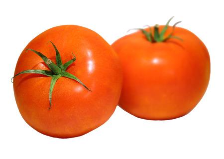 고기의: meaty tomatoes