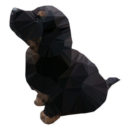 bernese: Isolated low polygonal black puppy of Bernese Mountain Dog Illustration