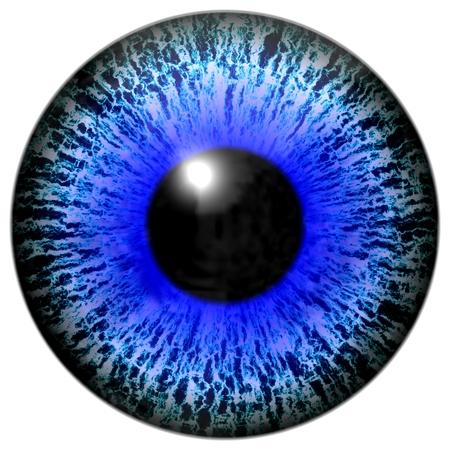 sense of sight: Isolated illustration of blue eye with black pupil