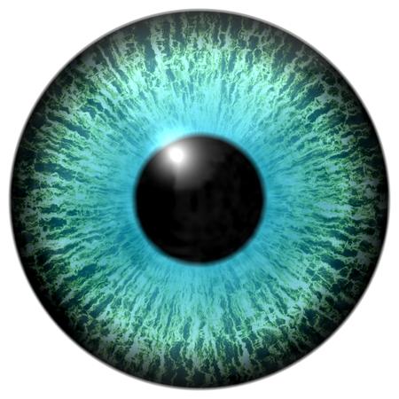 sense of sight: Isolated cyan blue eye illustration on white background