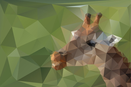 camelopard: Low poly, triangular, giraffe head on green polygonal background; modern illustration can be easily separated