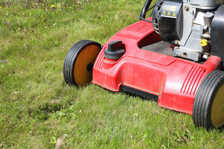 Detail of dethatcher, also known as lawn scarifier -  device that removes thatch from lawns; on mowed lawn; machine with gasoline engine Фото со стока - 79873741