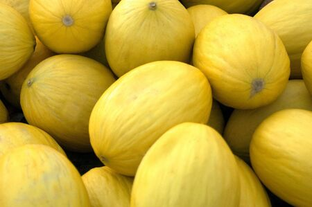 A crate of yellow melons at the market Stock Photo