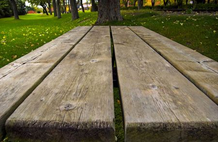 A picnic table perspective shot at the park