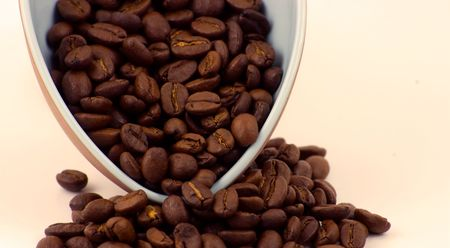 A scpop of Kenyan Coffee Beans Stock Photo