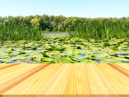 Wooden pier or table with the image of a lake overgrown with water lilies and reeds as a background. 3D illustration