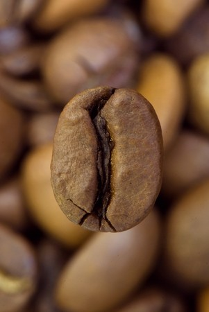 background from the spilled grains of Brazilian coffee Stock Photo